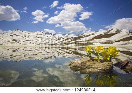 spring and mountain reflections.spring weather in the mountains and reflections.