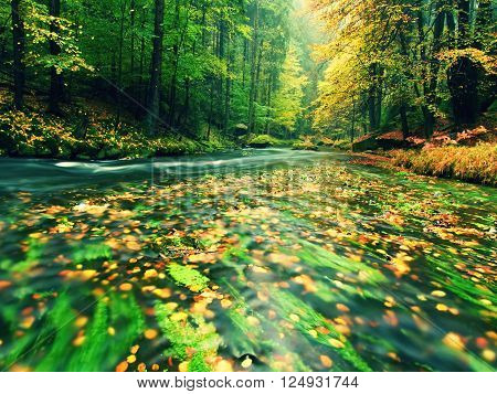 View Into Autumn Mountain River With Blurred Waves,, Fresh Green Mossy Stones And Boulders On River