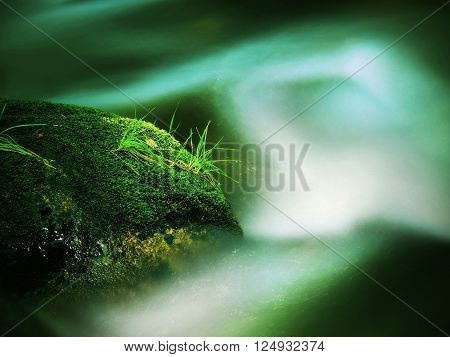 Big Abandoned Boulder Covered By Fresh Green Moss In Foamy Water Of Mountain River. Light Blurred Co