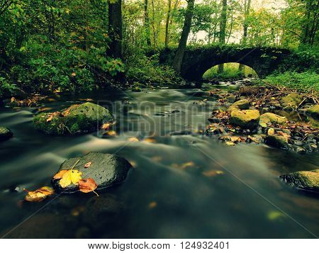 Old Stony Bridge. Autumn River. Water Of Stream Full Of Colorful Leaves, Leaves On Gravel, Blue Blur