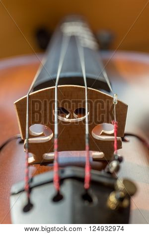 Close-up of the four strings of a violin and the sound post vertical orientation