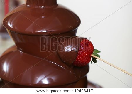 Chocolate Fountain Dessert
