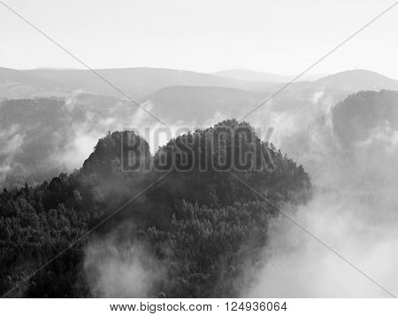 View Into Deep Misty Valley In Saxony Switzerland Park. Sandstone Peaks Increased From Fog. Black An