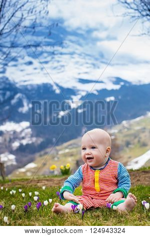 Little baby playing with crocus flowers in the Alps mountains in spring. Child in flower meadow with snow covered mountain peaks in the background. Spring vacation in Switzerland for family with child