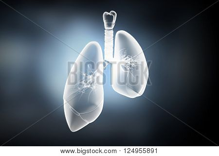 Lungs health concept