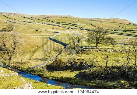 Malham Beck, North Yorkshire, England surrounded by small fields with characteristic limestone walls and trees with bare branches.