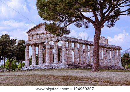 Greek Temples At Paestum In Italy