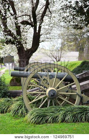 Old Cannons in Natchez Mississippi under spring bloom