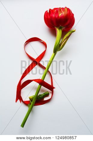 international women's Day March 8, red flower with red ribbon