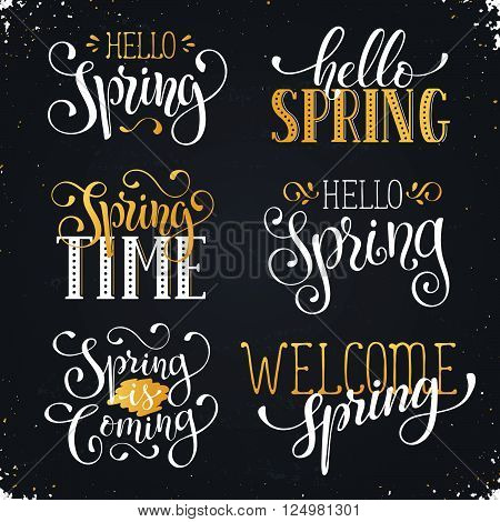 Hand written Spring time phrases in white and gold. Greeting card text templates on blackboard. Hello Spring lettering in modern calligraphy style. Spring wording.