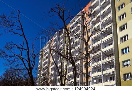 Branches of a tree against the facade of a modern residential building in Poznan