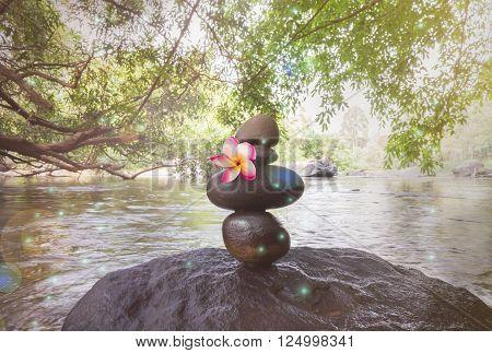 Pink Frangipani Or Plumeria On Superimposed Waterfall Pebble Rock