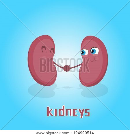 Kidneys Hold Hands Smiling Cartoon Character Icon Banner Flat Vector Illustration