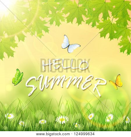 Inscription Hello Summer on nature background with flowers in the grass, maple leaves, shinning Sun and flying butterflies, illustration.