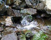 Green Rocks In Brook