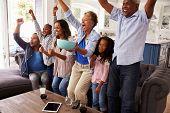 Multi generation black family watching sport on TV celebrate poster