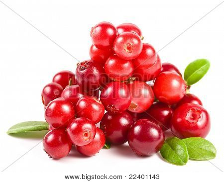 Preiselbeeren, isolated on white background