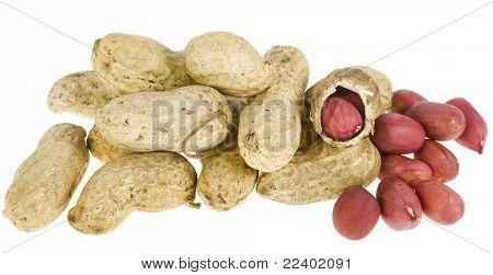 Erdnüsse isolated on white background