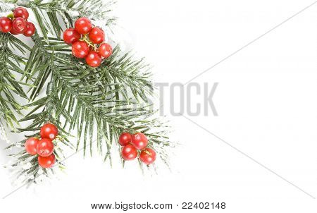christmas branch with copy space for your text