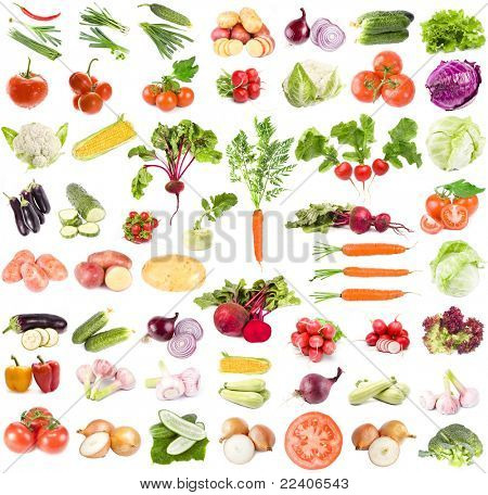 A large collection of fresh vegetables isolated on a white background