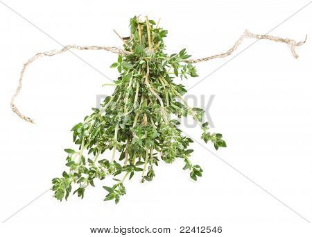 bunch thyme herb isolated on white background