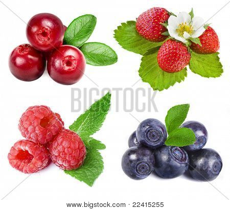 collection of forest berries isolated on a white background