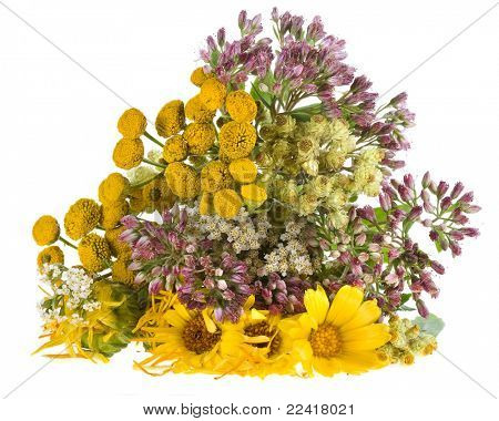 mix of aromatic medical herbs isolated on a white background