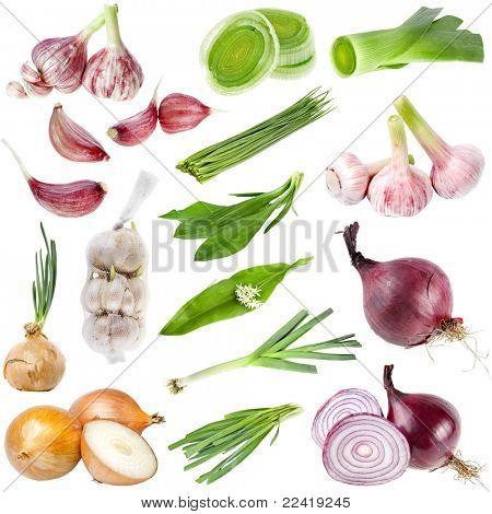 Una gran colección cebolla y el ajo aislado sobre fondo blanco