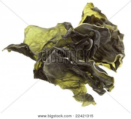 dried seaweed kelp background