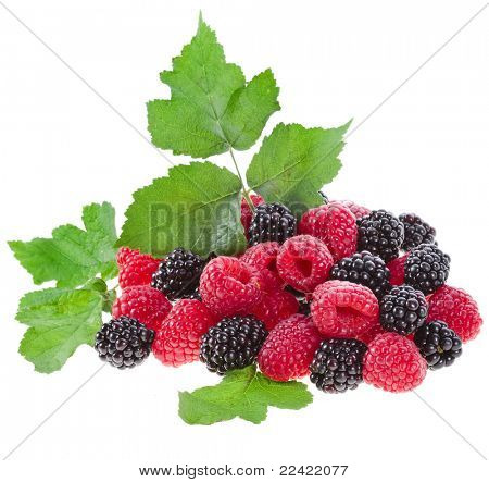 Blackberry ( dewberry ) with raspberry isolated on white background