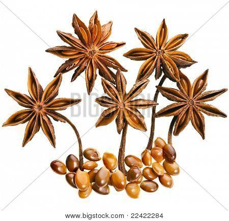 Star anise (badiane) isolated on white background