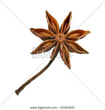Star anise (badiane) isolated on white