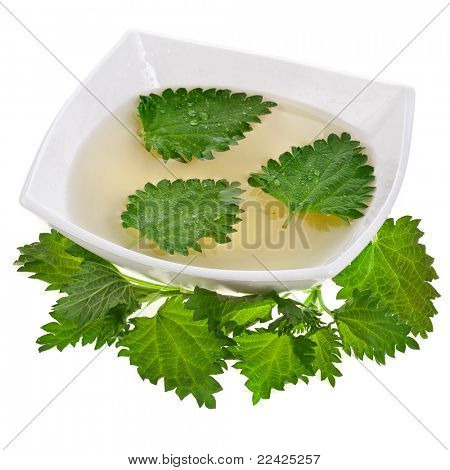 Herbal nettle tisane  isolated  on white background