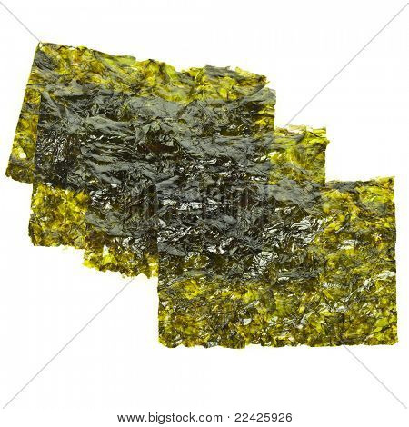 dried seaweed kelp isolated
