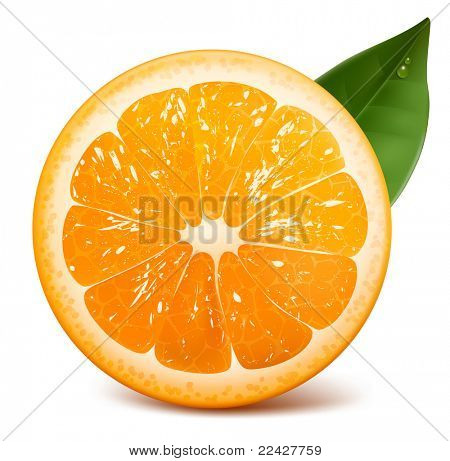 Fresh ripe orange with leaf. Raster version.