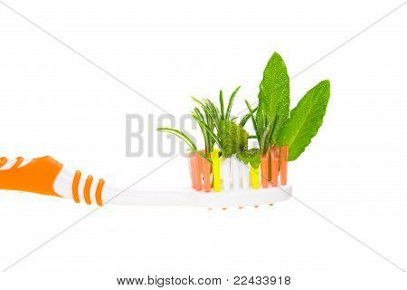 Pasta de hierbas