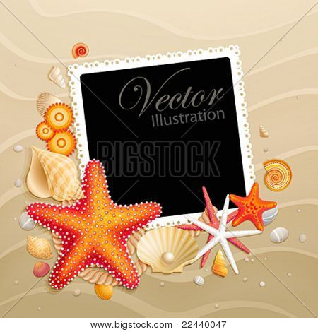 Picture, shells and starfishes on sand background. Vector illustration.