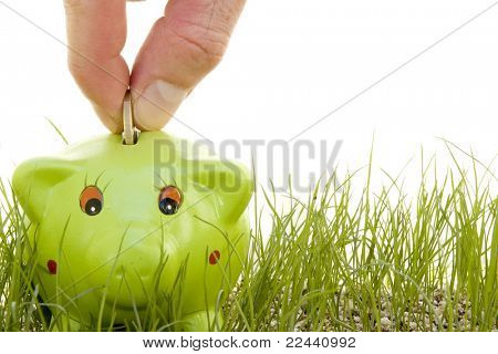 saving money on a piggy-bank on the grass isolated on a white background