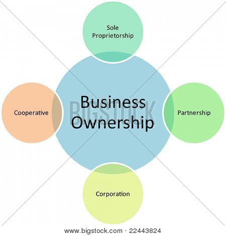 business ownership diagram management strategy concept chart editable, vector   illustration