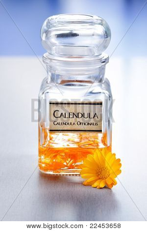 Calenudla Officinalis Plant Extract