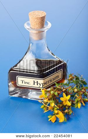 Hypericum Plant And Extract