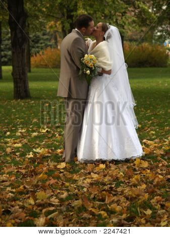Young Just Married Kissing In Park
