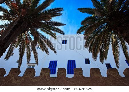 Whitewashed Exterior Wall With Blue Windows And Palm Trees