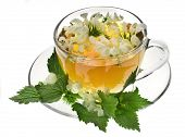 pic of dandruff  - Herbal tea with flowers nettle on white background - JPG