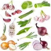stock photo of red shallot  - A large collection onion and garlic  isolated over white background - JPG