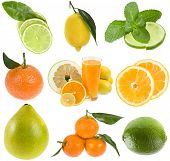 image of pamelo  - collection fresh citrus isolated on the white background - JPG