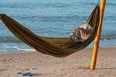 hammock poster