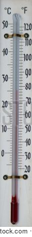 Thermometer Bulb