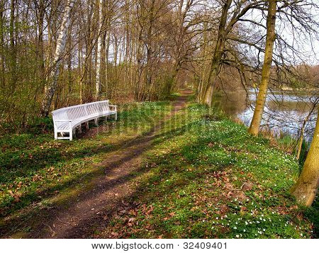 Beautiful Garden Park Wooden Bench Seating Corner