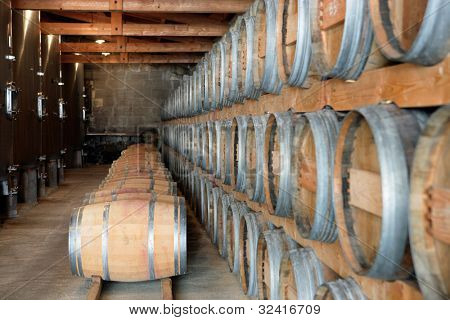 Wine storage cellar
